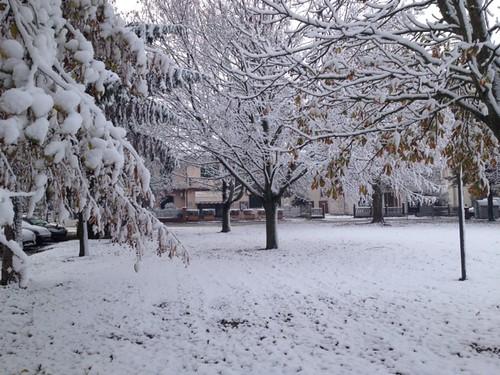 Nevicata 8 Dic 2012 by meteomike
