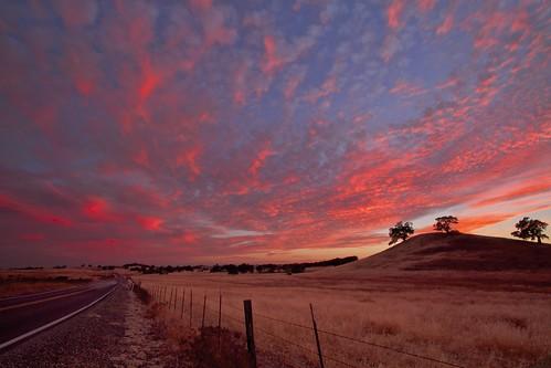 california road ca pink sunset red sky usa tree sunrise fence landscape oak folsom sacramento norcal ernogy