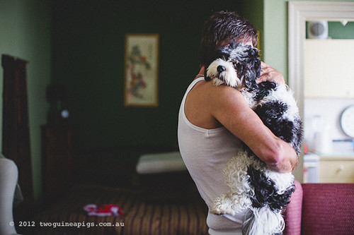 Love is. The Thomaz Boys by twoguineapigs pet photography