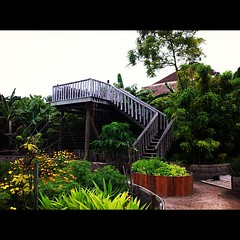#soneva #garden #photography #husseinphotography #iphone