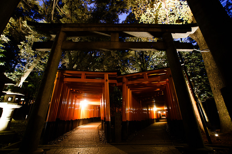 Fushimi Inari by night