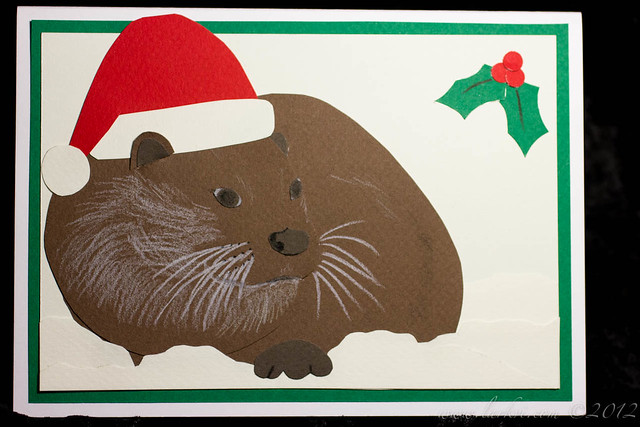 Wishing Everyone an Otter-ly Delightful Christmas