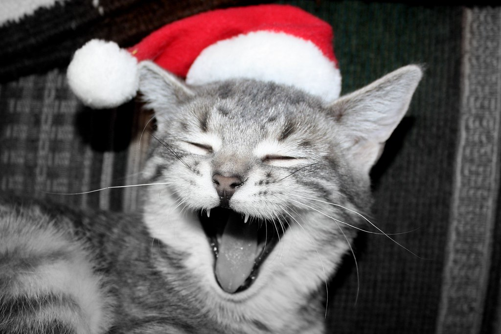 Joyeux Noël - Merry Christmas - Feliz Navidad - Frohe Weinachten - buon Natale