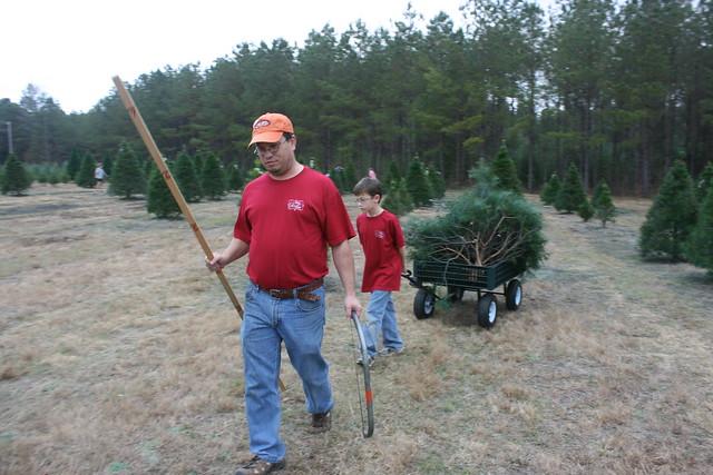ChristmasTreeShopping2012 - 19