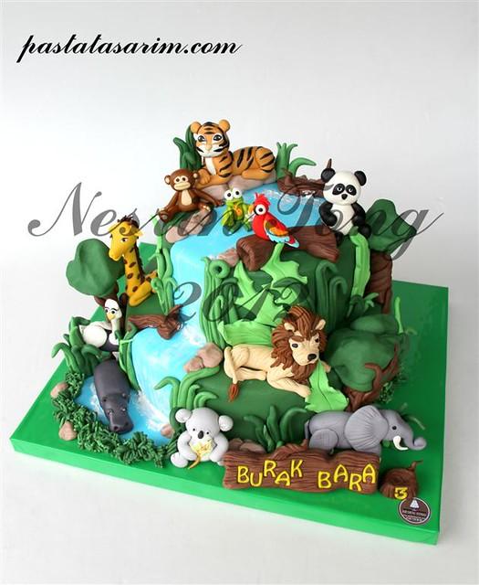 animal cake (Medium)