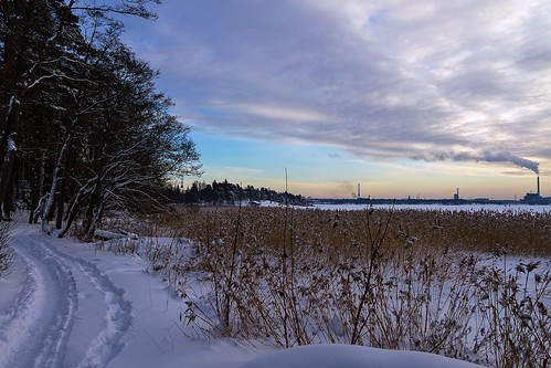 trees winter snow clouds finland helsinki december 2012 seurasaari canoneos7d mygearandme adobelightroom4 me2yoyphotographylevel1