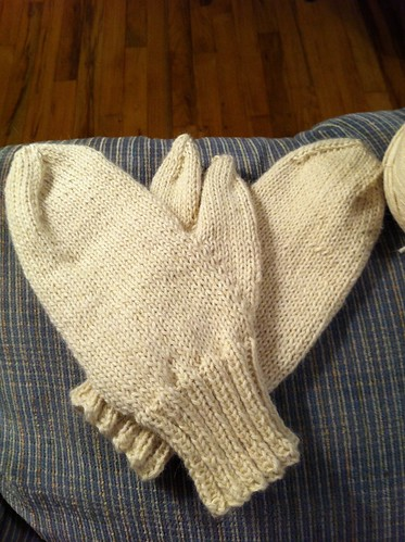 SIL's Basic Mittens done! by BlueDragon2