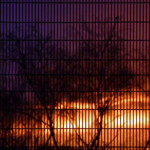 fenced sunset by pho-Tony