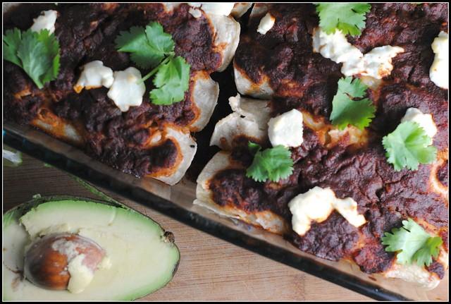 zucchinigoatcheeseenchiladas1