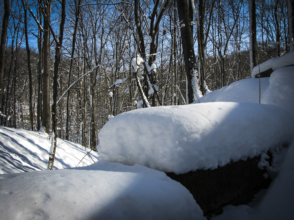 Snowy Brown County State Park, Trail 1