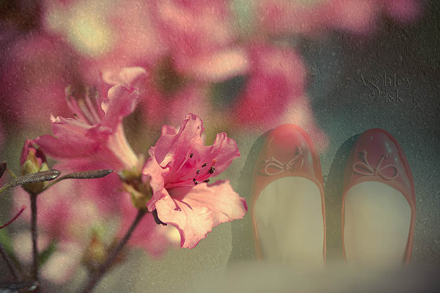 Azalea Double Exposure RS