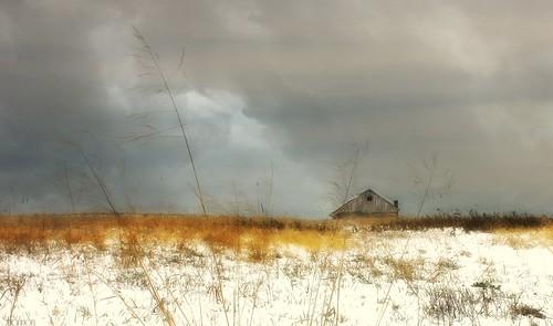 sky snow abandoned pennsylvania snowfield harrisburg farmbuilding canoneosrebelt2i shannonroseoshea