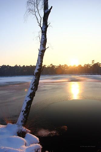 light sunset sun lake reflection water netherlands zonsondergang meer bevroren silhouettes half breda zon noordbrabant reflectie kogelvanger pimvdh pimvandenheuvel