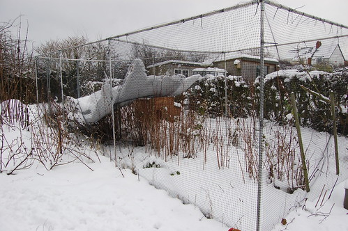 allotment snow Jan 13 10