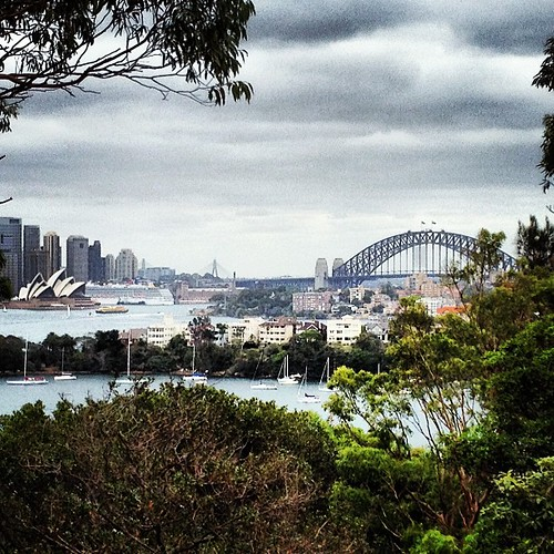 View from the #zoo #tarongazoo #sydney #igsydney #sydneyoperahouse #sydneyharbourbridge