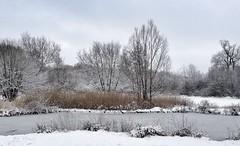 Snow on Tocil lake