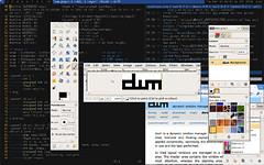 dwm-20100318s