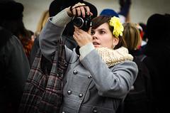 Yellow Flower Photographer