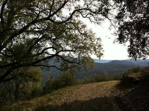 Bajada desde el Cerro Viento
