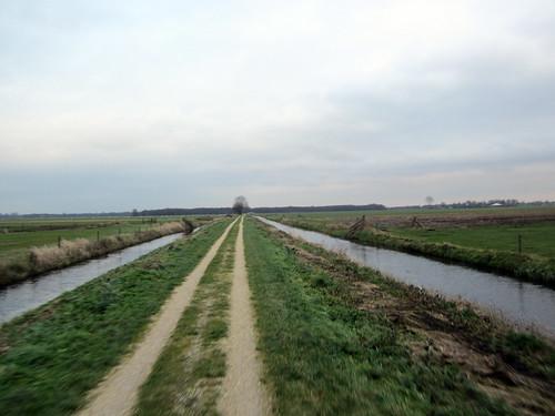 Friesland vista