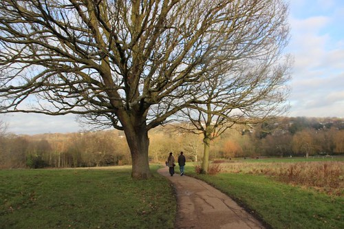 Hampstead Heath December
