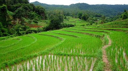 Tailandia_2012_39