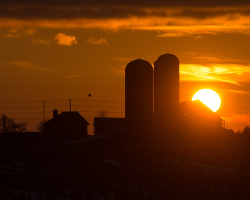 winter sunset rural farm country silo chatham