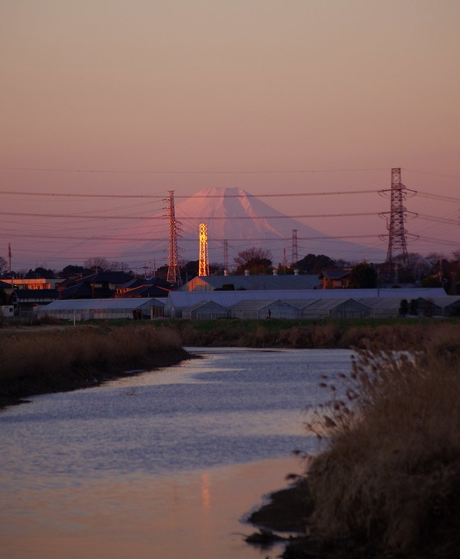 朝明けに染まる杉戸富士