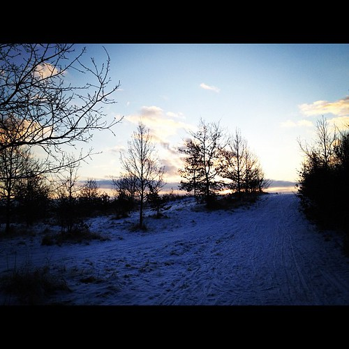 morning winter snow sunrise lubecca kücknitz sandfeld