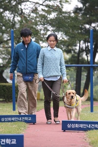 안내견 '온유'를 기증받은 서울시 공무원 최수연씨