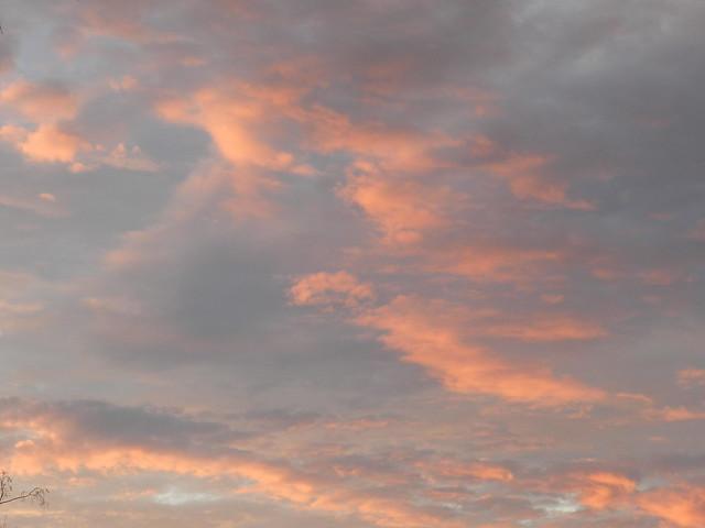 skywatDSCN0386
