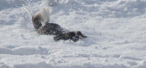 ABA-Snow