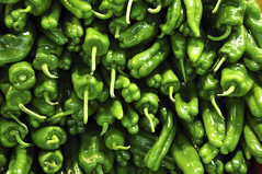 plant(0.0), fiddlehead fern(0.0), cayenne pepper(1.0), chili pepper(1.0), bell pepper(1.0), vegetable(1.0), serrano pepper(1.0), bell peppers and chili peppers(1.0), bird's eye chili(1.0), peperoncini(1.0), produce(1.0), food(1.0), pimiento(1.0), jalapeã±o(1.0),