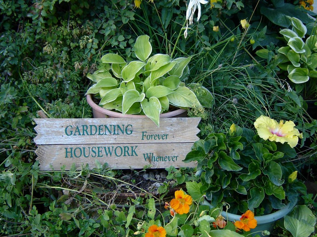Funny garden quotes good morning quotes - Gardening mistakes maintaining garden winter ...