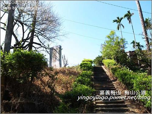 嘉義梅山_梅山公園20130106_R0071492