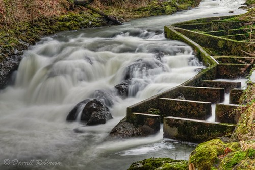 water canon river waterfall washington sigma adobe vivitar manfrotto fishladder tumwater deschutesriver tumwaterfallspark thurstoncounty tumwaterfalls canoneos50d manfrotto190xprobtripod lightroom3 zeikos photomatixpro4 middletumwaterfalls adobephotoshopcs5 adobebridgecs5 sigma1770mmf2845dcmacrolens zeikoscpl vivitarwirelessshutterreleasevivrc200 manfrottobasicpantilthead bafflefishway