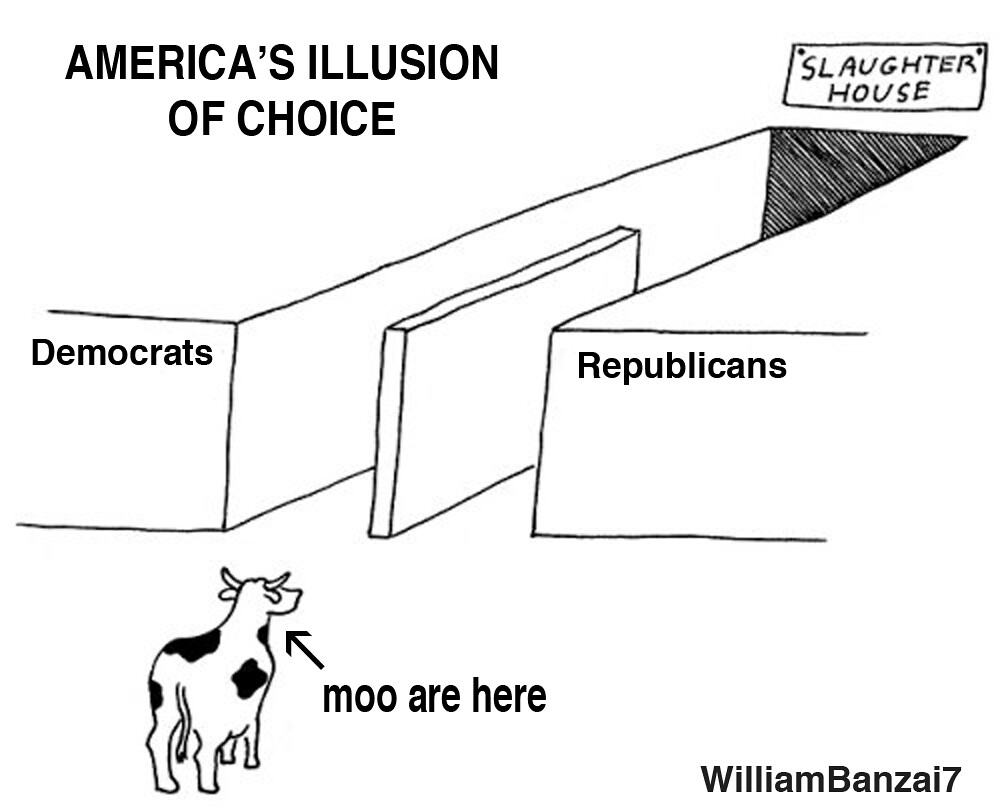 ILLUSION OF CHOICE UPDATED