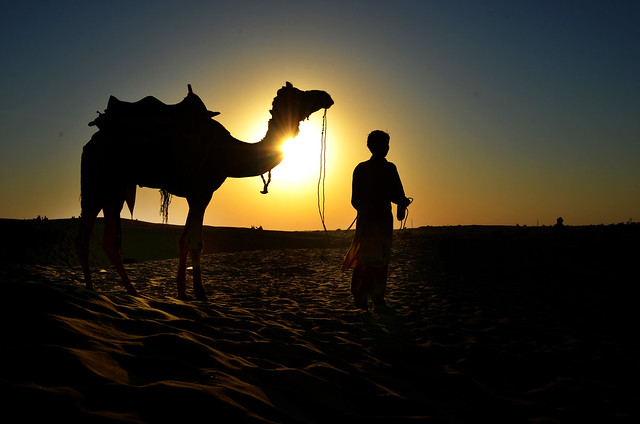 Sunset Silhouette at Sam Desert, Rajasthan - Camel & its rider