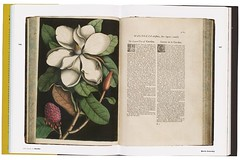 Pages from the library of libraries