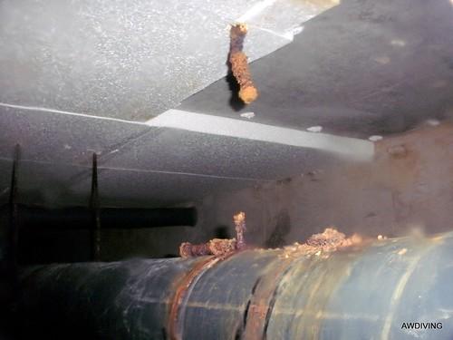 Door gecorrodeerd draadeind in bufferkelder