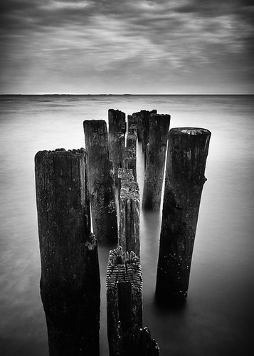 longexposure morning blackandwhite beach monochrome sunrise jetty shoreline maryland chesapeake chesapeakebay