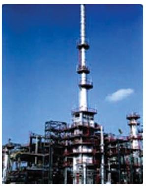 NCERT Class VIII Science Chapter 5 Coal and Petroleum