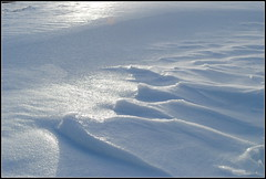 Bölchen-Tundra