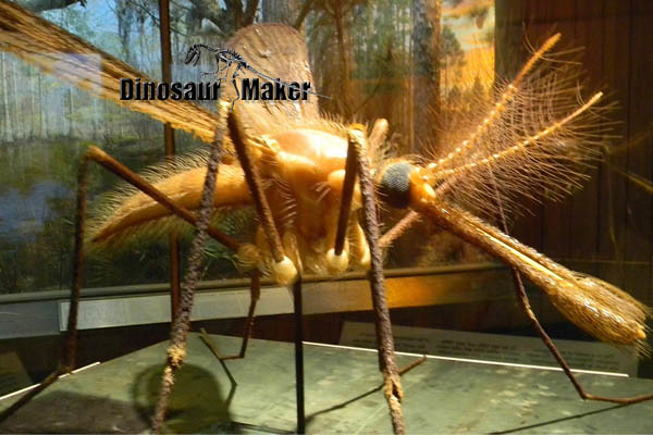 Animatronic Insect Mosqutio