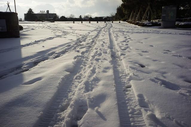 雪のホームフィールド