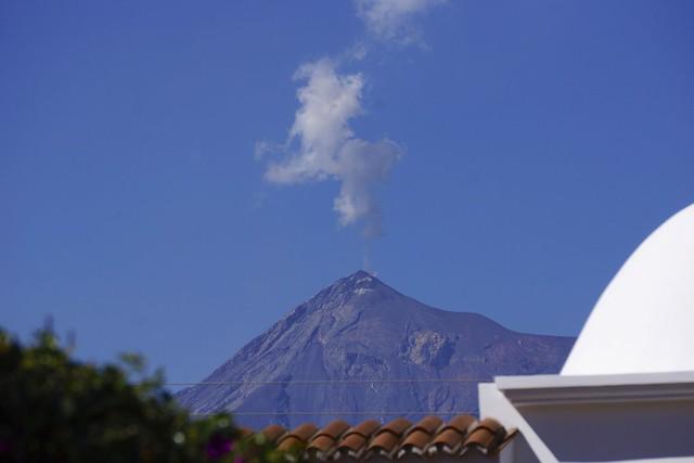 Antigua 81