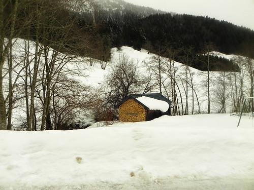 Une cabane à bois bien rangée au Pénon