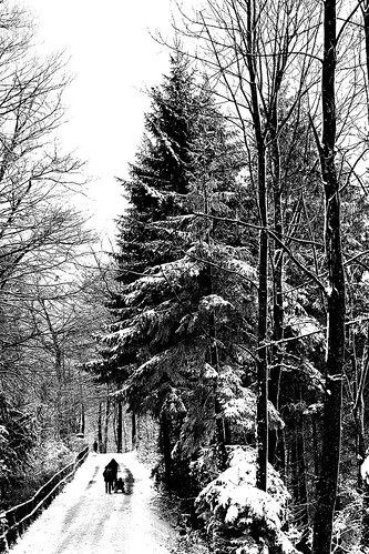 artborghi_black and white_snow_1