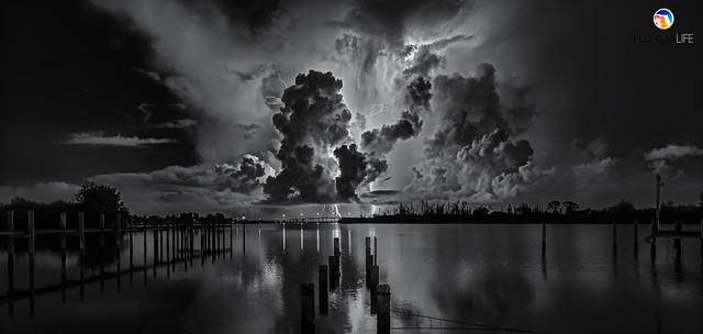 Florida Life: Space Oddity II Monochrome