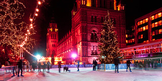 Ice Rink, Natural History Museum (ii)